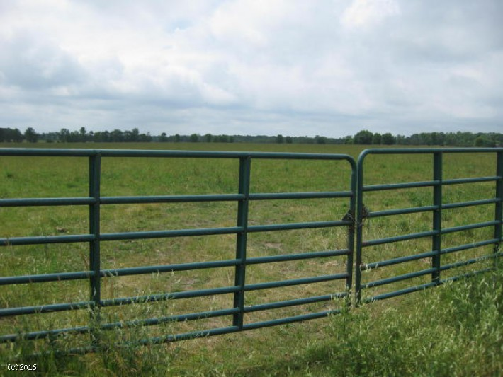 120 Acres of Pasture Ground