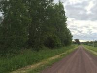 Hunting, Creek Frontage Land For Sale, Askov, MN