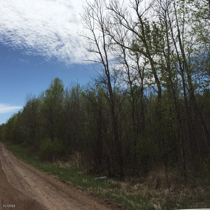 Hunt, 4 Wheel, Camp, on 80 Acres, Sandstone, MN